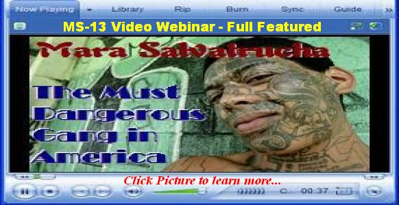 MS-13 Webinar Training for Law Enforcement (now only $5)